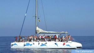 catamaran mustcat